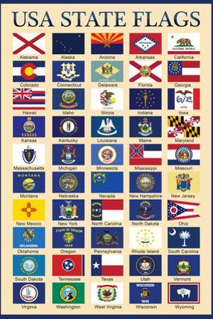 USA 50 State Flags Chart Education Plastic Sign