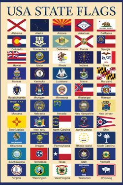USA 50 State Flags Chart Education