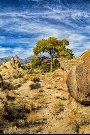 https://imgc.allpostersimages.com/img/posters/usa-alabama-hills-california-long-pine_u-L-Q1D07SP0.jpg?p=0