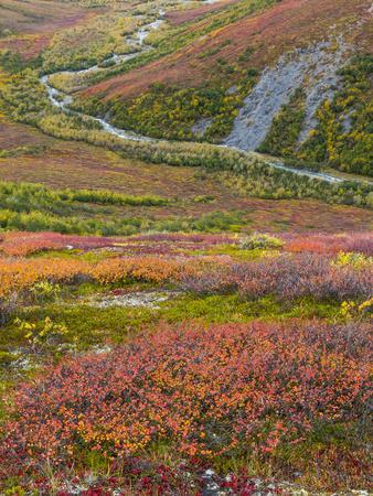https://imgc.allpostersimages.com/img/posters/usa-alaska-brooks-range-tundra-and-dietrich-river_u-L-Q1CZYJV0.jpg?p=0