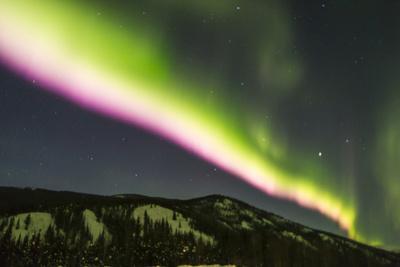 https://imgc.allpostersimages.com/img/posters/usa-alaska-fairbanks-aurora-borealis-at-night_u-L-Q1D042B0.jpg?p=0