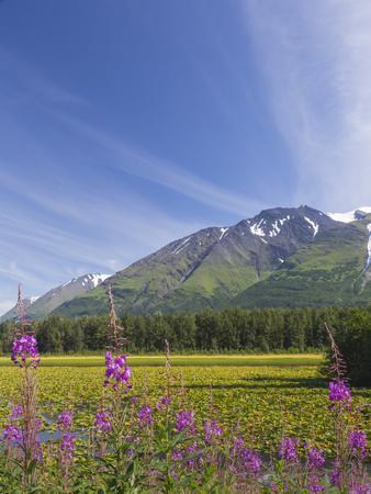 https://imgc.allpostersimages.com/img/posters/usa-alaska-kenai-peninsula-mountain-and-lake-landscape_u-L-Q1D0G1T0.jpg?p=0