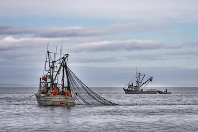 https://imgc.allpostersimages.com/img/posters/usa-alaska-kodiak-chiniak-bay-commercial-fishing-for-salmon_u-L-Q1D04BA0.jpg?p=0