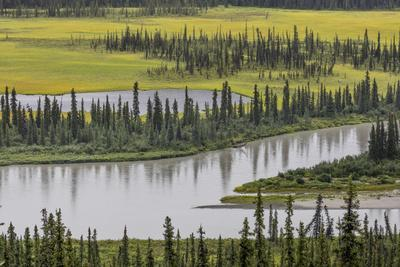 https://imgc.allpostersimages.com/img/posters/usa-alaska-nenana-river-valley-landscape-of-valley-river-and-pond_u-L-Q1D04690.jpg?p=0