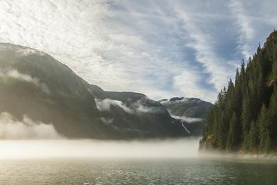 https://imgc.allpostersimages.com/img/posters/usa-alaska-tongass-national-forest-endicott-arm-in-fog_u-L-Q1CZV590.jpg?p=0