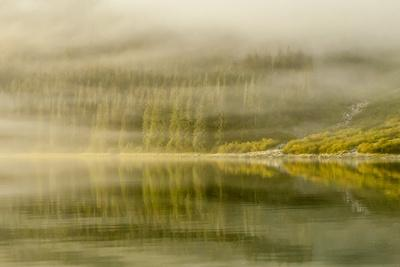 https://imgc.allpostersimages.com/img/posters/usa-alaska-tongass-national-forest-endicott-arm-in-fog_u-L-Q1D0EVI0.jpg?p=0