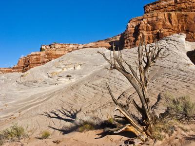 https://imgc.allpostersimages.com/img/posters/usa-arizona-big-water-vermillion-cliffs-wilderness-whitehouse-trailhead_u-L-Q1CZYAP0.jpg?p=0