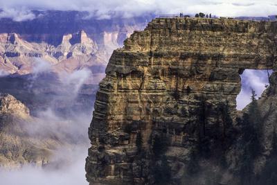 https://imgc.allpostersimages.com/img/posters/usa-arizona-grand-canyon-national-park-north-rim_u-L-Q12TASI0.jpg?p=0