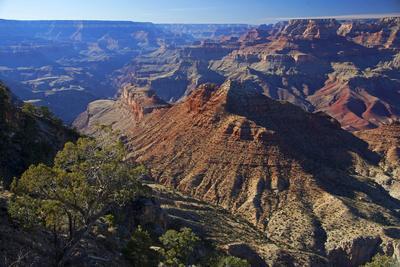 https://imgc.allpostersimages.com/img/posters/usa-arizona-grand-canyon-vista_u-L-Q12T4PJ0.jpg?p=0
