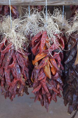 https://imgc.allpostersimages.com/img/posters/usa-arizona-sedona-hanging-dried-chili-peppers_u-L-Q1D0INC0.jpg?p=0