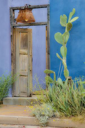 https://imgc.allpostersimages.com/img/posters/usa-arizona-tucson-blue-house_u-L-Q1D06YN0.jpg?artPerspective=n