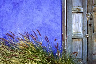 https://imgc.allpostersimages.com/img/posters/usa-arizona-tucson-colorful-wall-and-weathered-door_u-L-Q1GC3G70.jpg?artPerspective=n