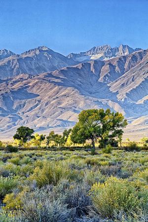 https://imgc.allpostersimages.com/img/posters/usa-bishop-california-eastern-sierra-region-owens-valley_u-L-Q1CZZ600.jpg?artPerspective=n
