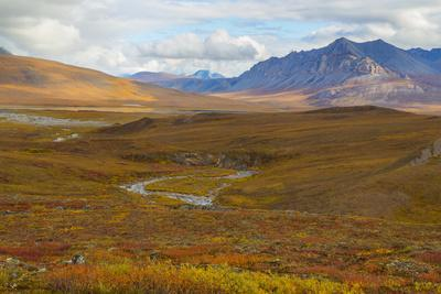 https://imgc.allpostersimages.com/img/posters/usa-brooks-range-gates-of-the-arctic-national-preserve-autumn-color-in-tundra_u-L-Q1CZXP40.jpg?p=0