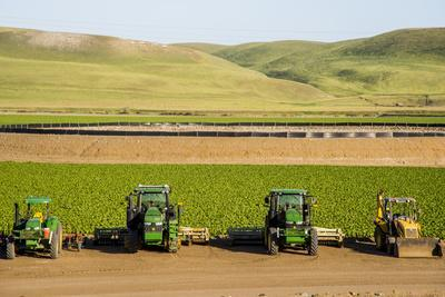 https://imgc.allpostersimages.com/img/posters/usa-california-agricultural-fields-outside-king-city_u-L-Q1CZWMU0.jpg?p=0