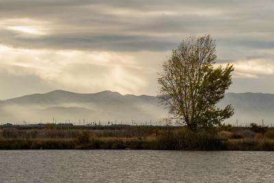 https://imgc.allpostersimages.com/img/posters/usa-california-central-valley-san-joaquin-river-near-firebaugh_u-L-Q1H22D10.jpg?artPerspective=n