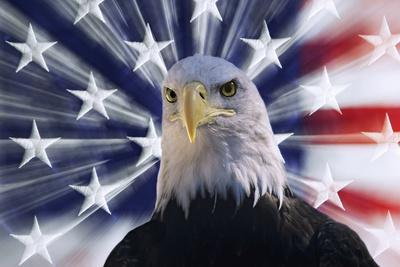 https://imgc.allpostersimages.com/img/posters/usa-california-composite-of-bald-eagle-and-american-flag_u-L-Q1CZYV20.jpg?p=0
