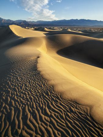 https://imgc.allpostersimages.com/img/posters/usa-california-death-valley-national-park-early-morning-sun-hits-mesquite-flat-dunes_u-L-Q12T74K0.jpg?p=0