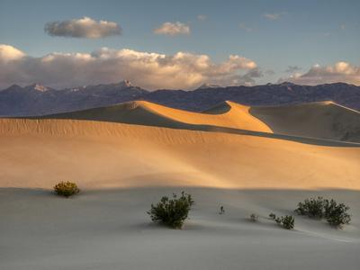 https://imgc.allpostersimages.com/img/posters/usa-california-death-valley-national-park-mesquite-flats-sand-dunes-blowing-sand_u-L-Q1H22S50.jpg?artPerspective=n