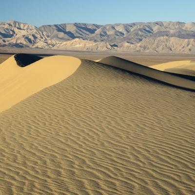 https://imgc.allpostersimages.com/img/posters/usa-california-death-valley-national-park-mesquite-flats-sand-dunes_u-L-Q1H1YKP0.jpg?artPerspective=n