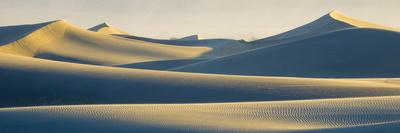 https://imgc.allpostersimages.com/img/posters/usa-california-death-valley-national-park-mesquite-flats-sand-dunes_u-L-Q1H1ZY90.jpg?artPerspective=n