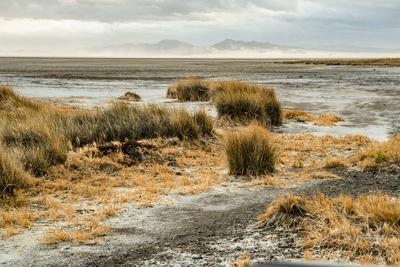 https://imgc.allpostersimages.com/img/posters/usa-california-mojave-desert-mojave-national-preserve-zzyzx-mojave-soda-lake_u-L-Q1H1YRY0.jpg?artPerspective=n