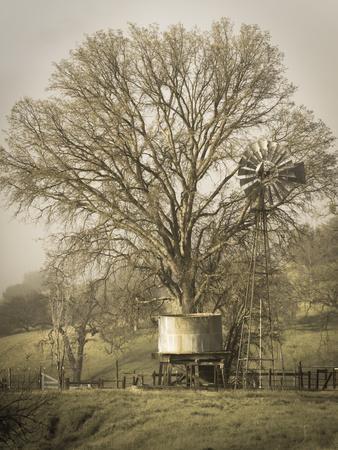 https://imgc.allpostersimages.com/img/posters/usa-california-shell-creek-road-windmill-water-tank-and-oak-tree_u-L-Q1D0AUY0.jpg?artPerspective=n