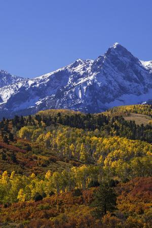 https://imgc.allpostersimages.com/img/posters/usa-colorado-san-juan-mountains-mountain-and-forest-in-autumn_u-L-Q1D0FKT0.jpg?p=0