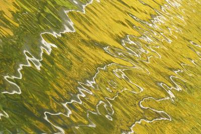 https://imgc.allpostersimages.com/img/posters/usa-colorado-san-juan-mountains-reflection-in-woods-lake_u-L-PU3D9D0.jpg?p=0
