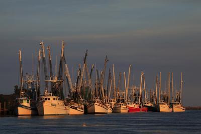 https://imgc.allpostersimages.com/img/posters/usa-florida-darien-shrimp-boats-docked-at-darien-ga_u-L-PU3DAM0.jpg?p=0