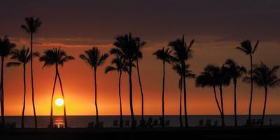 https://imgc.allpostersimages.com/img/posters/usa-hawaii-big-island-sun-setting-on-anaehoomalu-bay_u-L-Q1D0TIM0.jpg?artPerspective=n