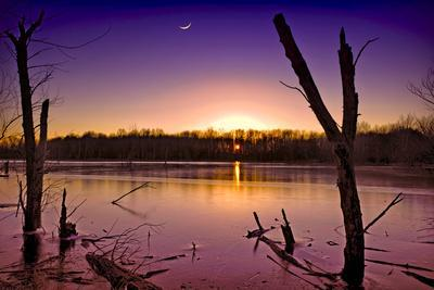 https://imgc.allpostersimages.com/img/posters/usa-indiana-the-celery-bog-wetlands-in-winter-at-sunset_u-L-PU3E3R0.jpg?p=0
