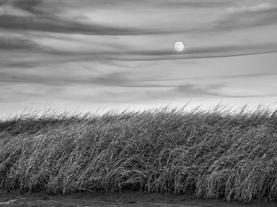 https://imgc.allpostersimages.com/img/posters/usa-massachusetts-cape-cod-full-moon-rising-at-first-encounter-beach_u-L-Q1D0OV60.jpg?p=0