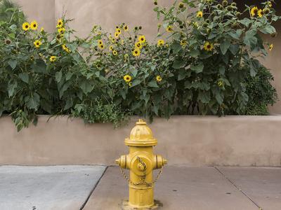 https://imgc.allpostersimages.com/img/posters/usa-new-mexico-santa-fe-fire-hydrant-downton-santa-fe-new-mexico_u-L-PU3FOT0.jpg?p=0