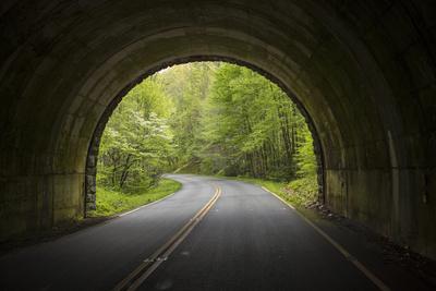https://imgc.allpostersimages.com/img/posters/usa-north-carolina-tunnel-on-the-blue-ridge-parkway_u-L-Q12T5VF0.jpg?p=0