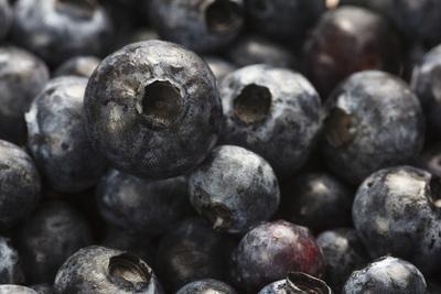 https://imgc.allpostersimages.com/img/posters/usa-oregon-keizer-blueberries_u-L-Q12T5R20.jpg?p=0