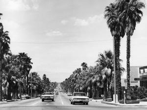 USA, Palm Springs