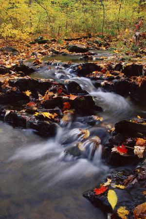 https://imgc.allpostersimages.com/img/posters/usa-pennsylvania-pocono-mountains-cascade-in-autumn-scenic_u-L-PXRT0C0.jpg?p=0