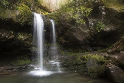 https://imgc.allpostersimages.com/img/posters/usa-tennessee-great-smoky-mountains-national-park-grotto-falls-scenic_u-L-Q12T1GZ0.jpg?p=0