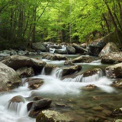 https://imgc.allpostersimages.com/img/posters/usa-tennessee-great-smoky-mountains-national-park-little-pigeon-river-at-greenbrier_u-L-Q12T1EM0.jpg?p=0
