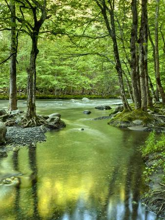 https://imgc.allpostersimages.com/img/posters/usa-tennessee-great-smoky-mountains-national-park-spring-reflections-on-little-pigeon-river_u-L-Q12T39T0.jpg?p=0