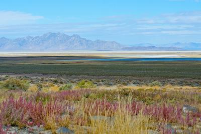 https://imgc.allpostersimages.com/img/posters/usa-utah-pony-express-road-fish-springs-national-wildlife-refuge-scenic-landscape-views_u-L-Q1H20E50.jpg?artPerspective=n