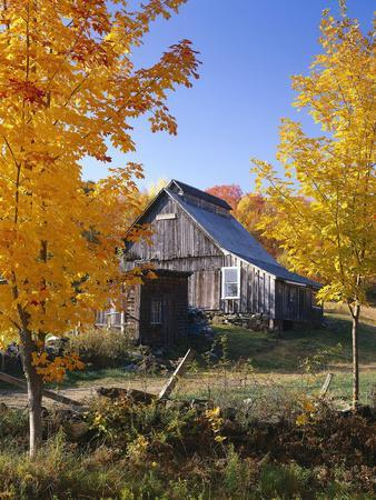 https://imgc.allpostersimages.com/img/posters/usa-vermont-house-old-maple-trees-autumn_u-L-Q11YK160.jpg?p=0