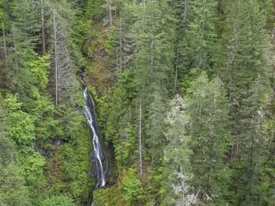 https://imgc.allpostersimages.com/img/posters/usa-wa-olympic-mountains-view-of-south-fork-skokomish-river-and-forest-from-high-steel-bridge_u-L-Q1H24550.jpg?artPerspective=n