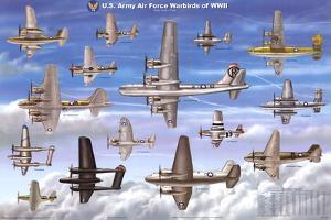 USAAF Warbirds WWII Airplane Educational Military Chart Poster