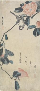 (Bird on Camellia), Early 19th Century by Utagawa Hiroshige
