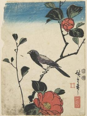 Bird on Cherry Branch, 1847-1852 by Utagawa Hiroshige