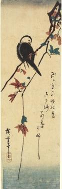 Bird on Maple Branch, 1830-1858 by Utagawa Hiroshige