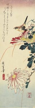 Chrysanthemums and a Shrike, 1830-1858 by Utagawa Hiroshige