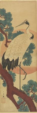 Crane on Pine Branch by Utagawa Hiroshige